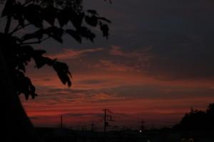 金星食の日の朝焼け 2012/08/14