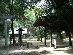 神明神社 手水舎の横から拝殿を望む