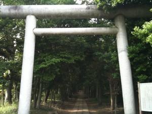 神明神社の参道入口の鳥居から中を望む。小さく女性の姿があるが、それでも道半ば。