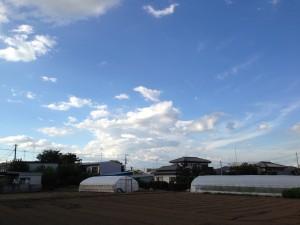 2013/9/3 16:22 群馬・栃木の方向の積乱雲