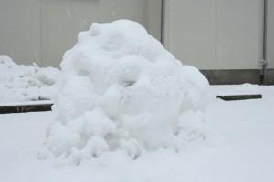 雪王蟲 その1 (降雪)