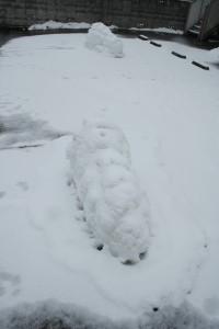 雪王蟲 2匹