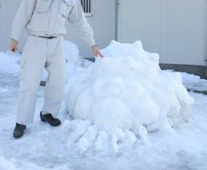 大雪王蟲と記念撮影